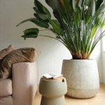 طراحی داخلی ساختمان با گیاهان سبز