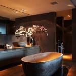 سرویس بهداشتی داخل خانه های زیبا