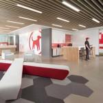 دکوراسیون داخلی مدرن و مفهومی شرکت نرم افزاری Redtail Technology