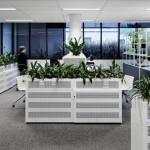 دکوراسیون داخلی دفتر مهندسی DealCorp