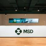 طراحی داخلی مدرن دفاتر MSD